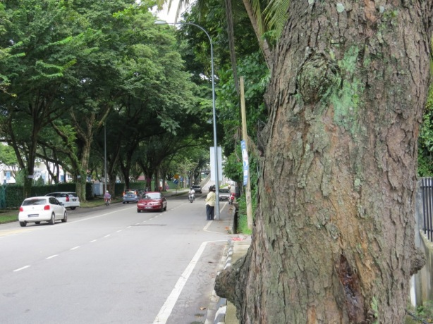 another road in penang