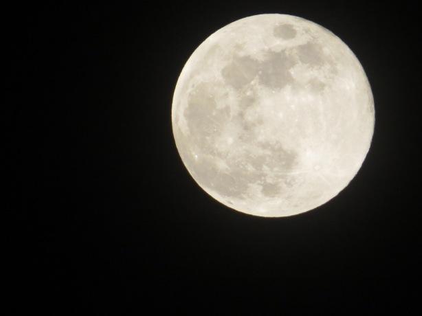 my moon shoot..